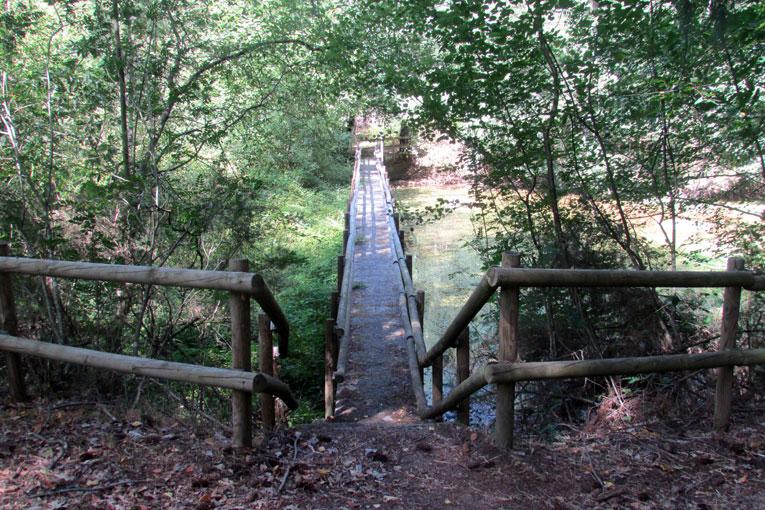 Trail Vila Nova de Paiva – 1