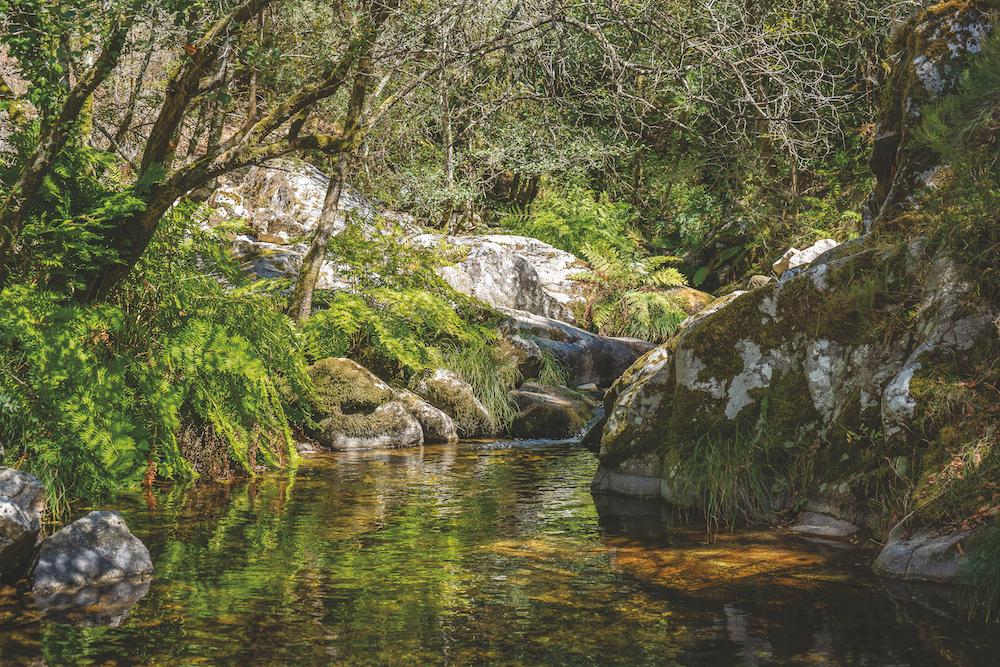 Rota dos Rios e Levadas